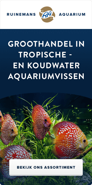 Ruinemans Tropical Fish B.V.