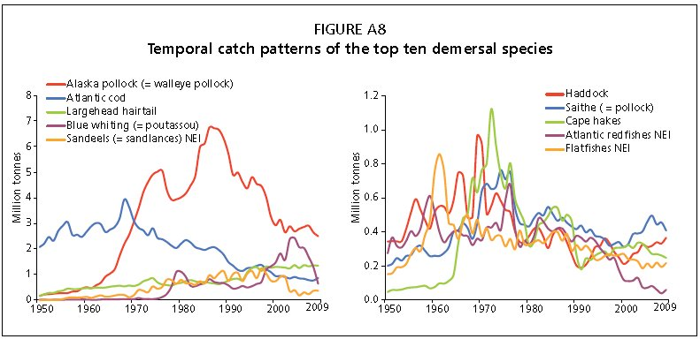 Temporal catch patterns of the top ten demersal speices